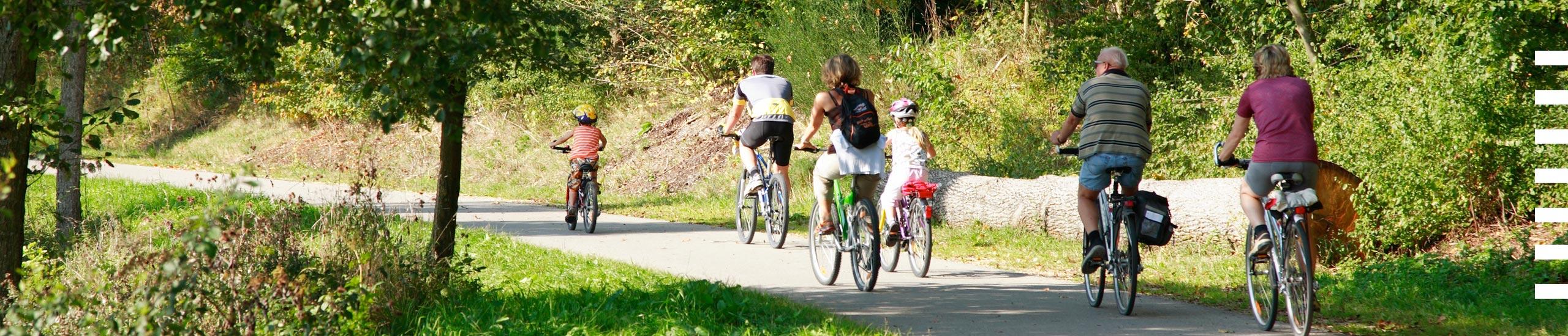 fietsen-Bosbeek2